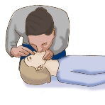 How to Perform CPR Child\JPG\CPRchild 5b.jpg