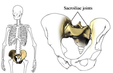 sacroiliac joint